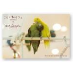 ことりカフェ吉祥寺 開店1周年記念【第二弾】