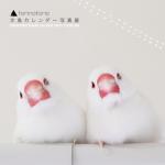 torinotorio文鳥カレンダー写真展
