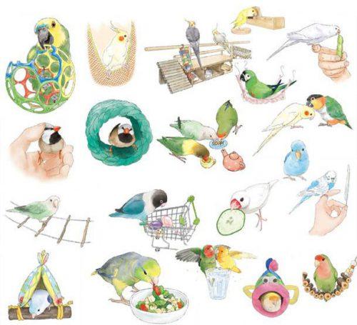 ことりカフェ上野本店9月『beccoの愛鳥画展』