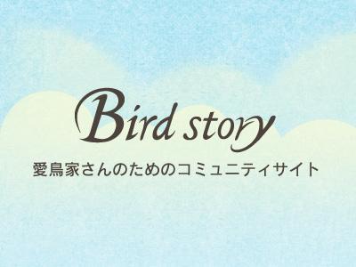 Birdstoryレポート