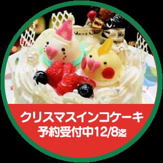 ことりカフェ監修 インコのクリスマスケーキがついに復活しました!