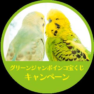 「グリーンジャンボインコ宝くじ」キャンペーン
