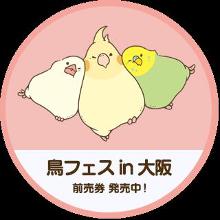 鳥フェス in 大阪 2020 開催!